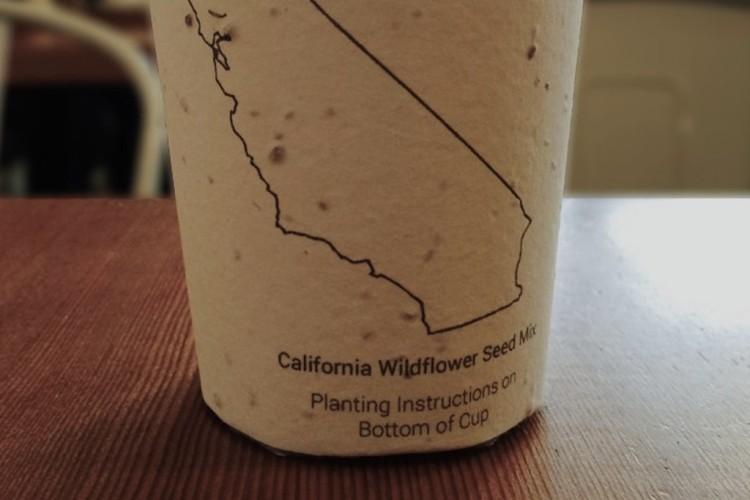 Многоразовые эко-стаканчики для кофе теперь можно приобрести в «МУ МУ»