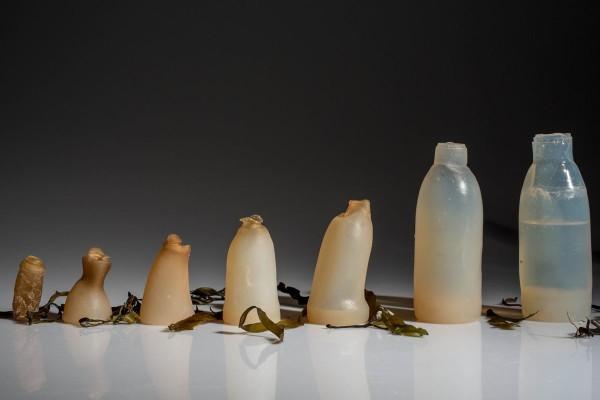 """Съедобные пластиковые бутылки — это реальность? Да! - Новости. Музей МУсора """"МУ МУ"""""""