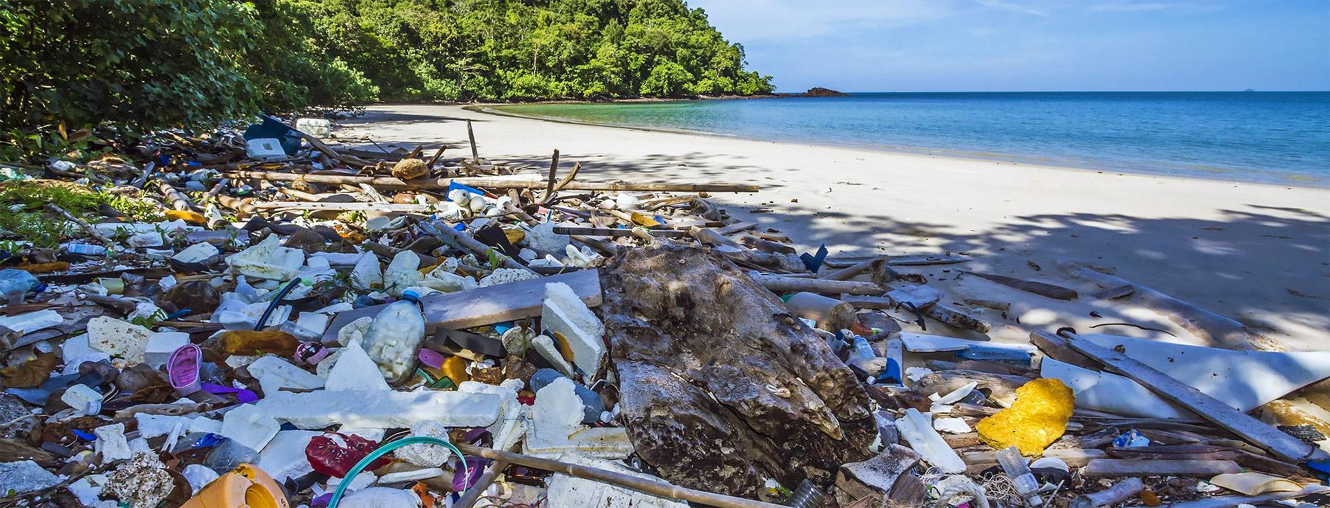 Фантастика из пластика: Сколько ни Броди по берегам Австралии…